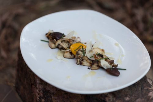 Hen of the woods dish at Old Vine Cafe