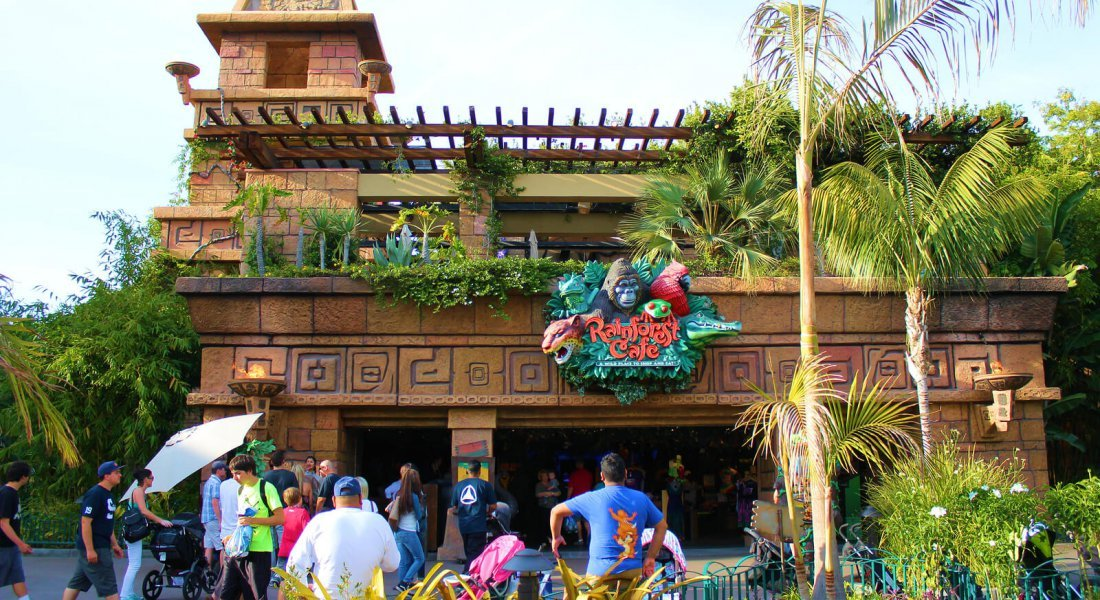 Busy Rainforest Cafe which is popular with families and children because of its rain forest ambience