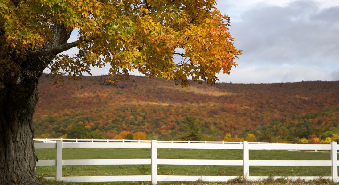 farm in the fall with white fence